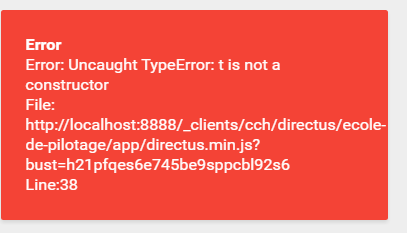 Directus / Error message