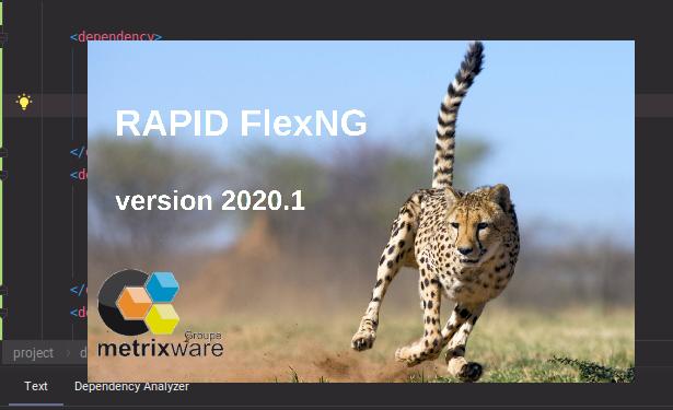 FlexNG: Adobe Flex to Angular 8+ Code Transformation Tool